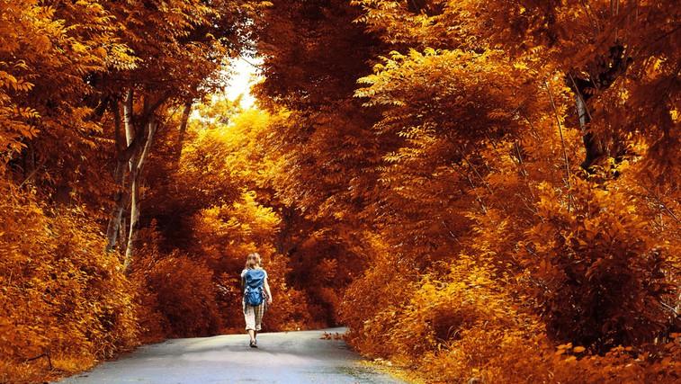 Tam, kjer je namera, je tudi pot! (foto: Shutterstock)