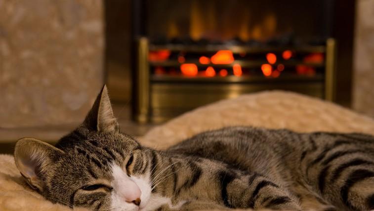 9 trikov, kako v mrzlih dneh poskrbimo za toplino brez povečanja stroškov ogrevanja (foto: Profimedia)