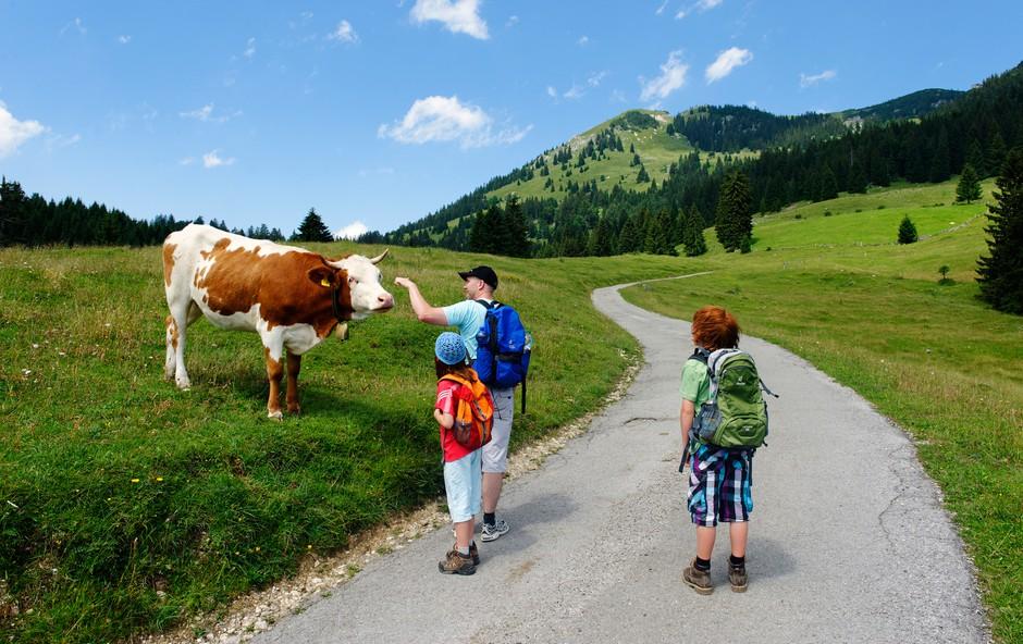 Gremo v hribe: Ideje za prijetne izlete z otroki (foto: Profimedia)