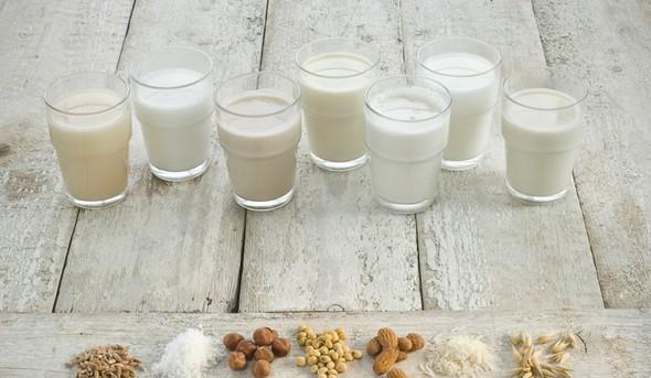 40-dnevni post Jaz #vztrajam dan 23: Kako pripraviti nadomestke mleka doma?