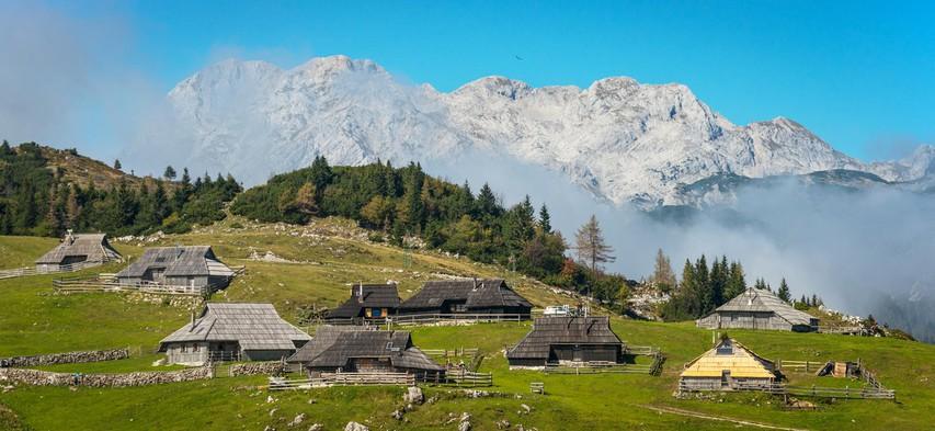 Krompirjeve počitnice na Veliki planini