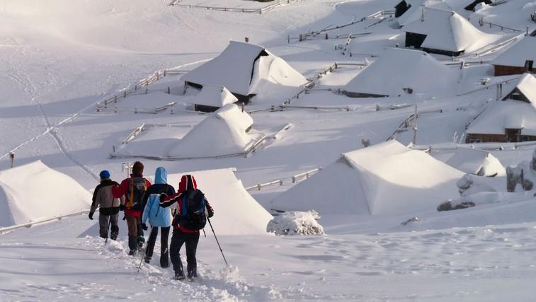 Velika planina (foto: Profimedia)