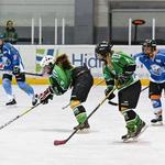 Hokej je šport, primeren za vse. (foto: Sara Ros)