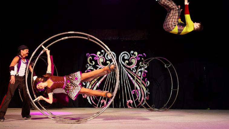 SENSATION: Moskovski cirkus na ledu Natalije Abramove (foto: pr)