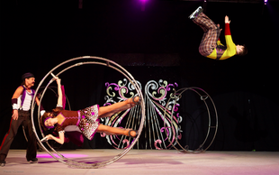 SENSATION: Moskovski cirkus na ledu Natalije Abramove