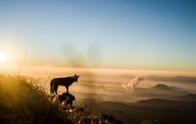 FOTO: Kam pobegniti pred onesnaženim zrakom?
