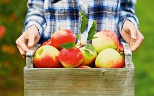 Jabolčna turbo dieta