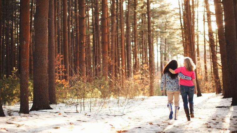 Zdravilna moč gozda (foto: Profimedia)