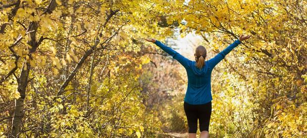 jesen-sprehod-gozd