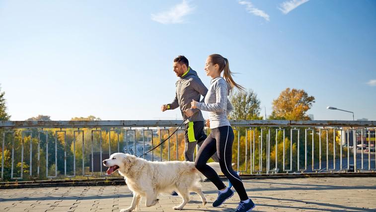 Nasveti za tek s psom: Kdaj je pravi čas, katere pasme so primerne, kje se skrivajo pasti ... (foto: Profimedia)