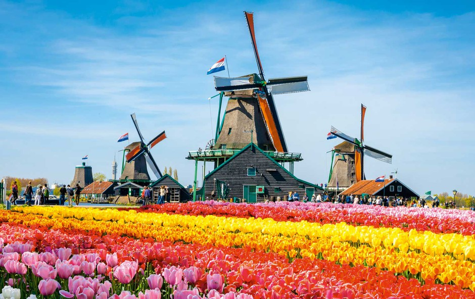 8 znamenitih mlinov na veter po Evropi (foto: Profimedia)