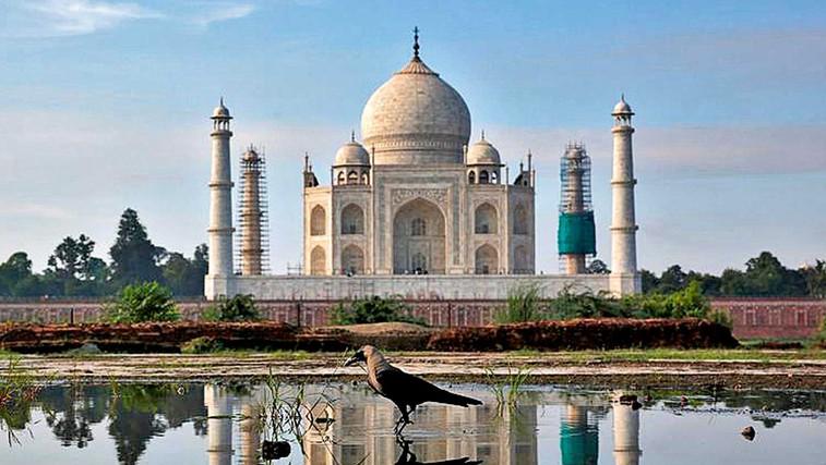Digitalizacija indijskega turizma - SIM kartica za turiste (foto: Profimedia)