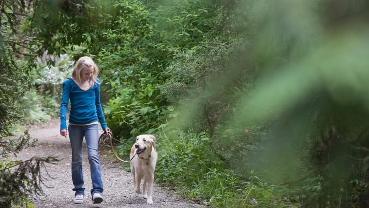 5 razlogov za sprehod (vsak dan) (foto: Profimedia)