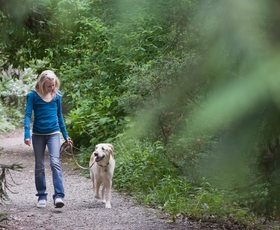 5 razlogov za sprehod (vsak dan)