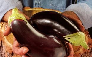 Jajčevci: Niso samo okusni, so tudi zdravilni!