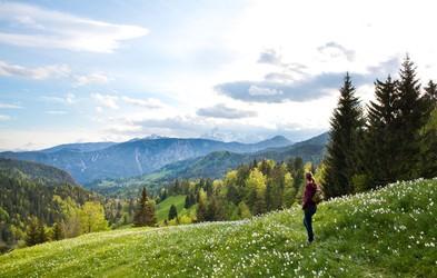 Foto: Po Sloveniji