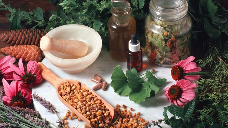 Zdravilne rastline: Predstavljamo vam nekaj najpogostejših naravnih orožij (foto: Profimedia)