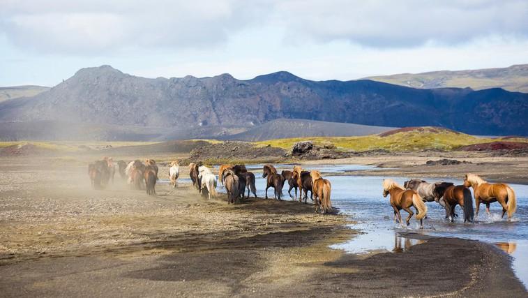 Video: Neopisljiva lepota Islandije (foto: Matic Oblak)