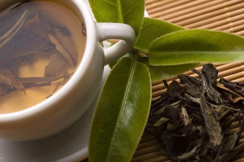 Vsi zdravilni učinki, ki jih ima beli čaj