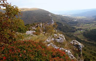 Ideja za izlet: Veli Badin — jesensko zardela ušesa Istre