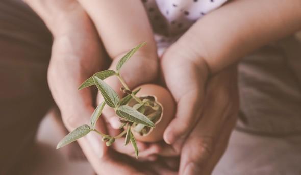 Kaj je skupnega otrokom, ki so zrasli v uspešne posameznike?