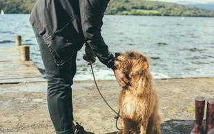 Koga psi bolj ubogajo, moške ali ženske? Raziskava je pokazala, da ...
