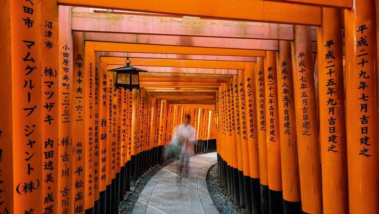 Ikigai: japonska skrivnost dolgega življenja (foto: Shutterstock)