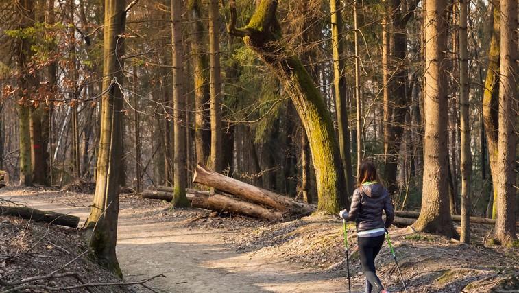 Česa ne smete pozabiti, ko vadbo prestavite v naravo (foto: profimedia)