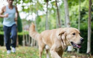 Kako vas pes naredi boljšo osebo?