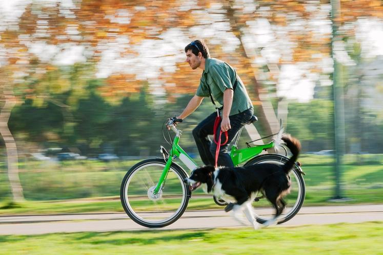 Kolesarjenje Če vašemu psu ne zmanjka energije niti po tem, ko se že dve uri igrata na travniku, naj se …