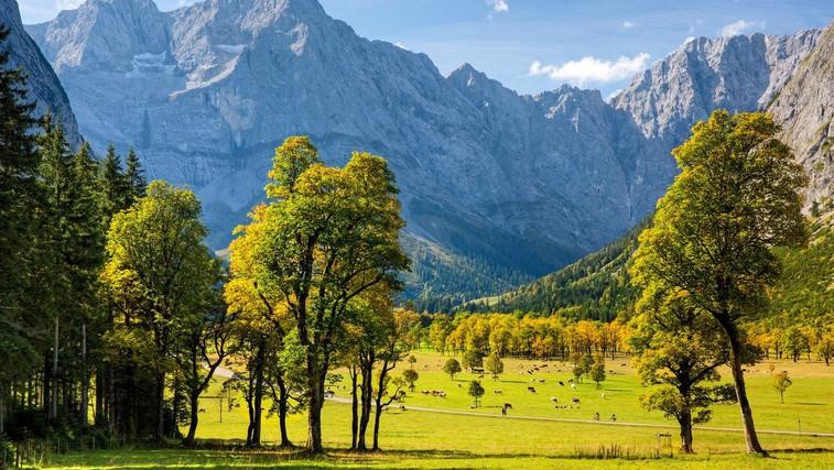 6 planinskih idej za izlete v Avstriji (foto: profimedia)