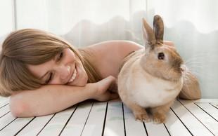 Tako koristne so lahko domače živali