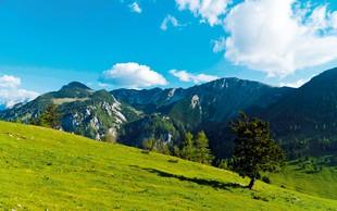 Ideja za izlet: Kriška gora