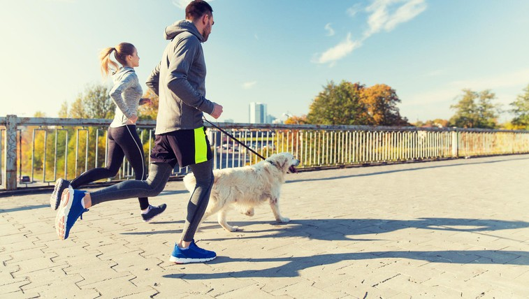 4 razlogi, zakaj so psi odlični prijatelji za vadbo (foto: profimedia)