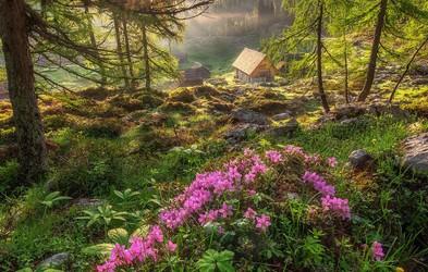 Čudovite fotografije: Planina Blato in Dvojno jezero