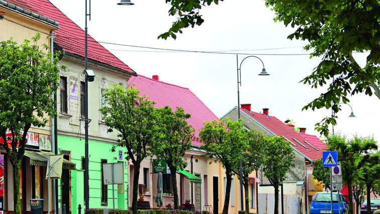 Multikulturna Lendava, mesto bograča, kulture … (foto: Goran Antley)