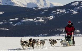 S konjem in psom po snegu