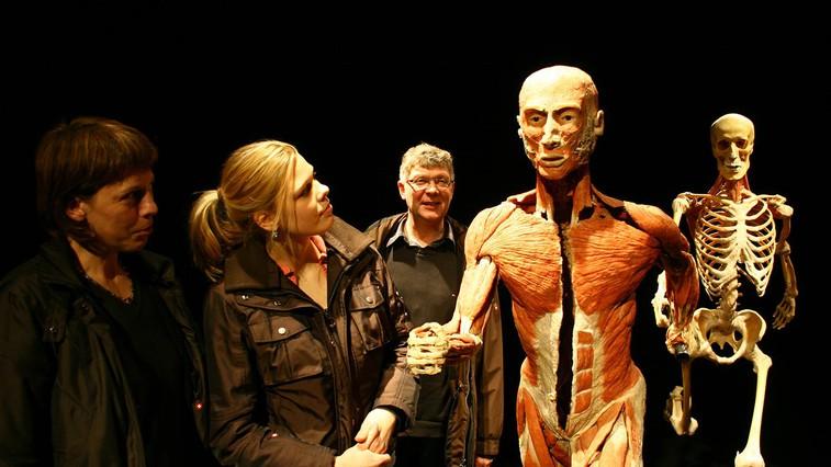 Na razstavi so prikazana celotna telesa, posamezni deli, prerezi in organi. (foto: PR)