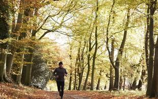 Veš, na kakšni tekaški podlagi je treba trenirati?