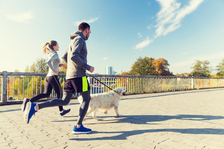 Lastniki psov lahko potrdijo, kako pozitivno ti vplivajo na gibanje. Tudi ob dneh, ko se vam ne ljubi na sprehod …