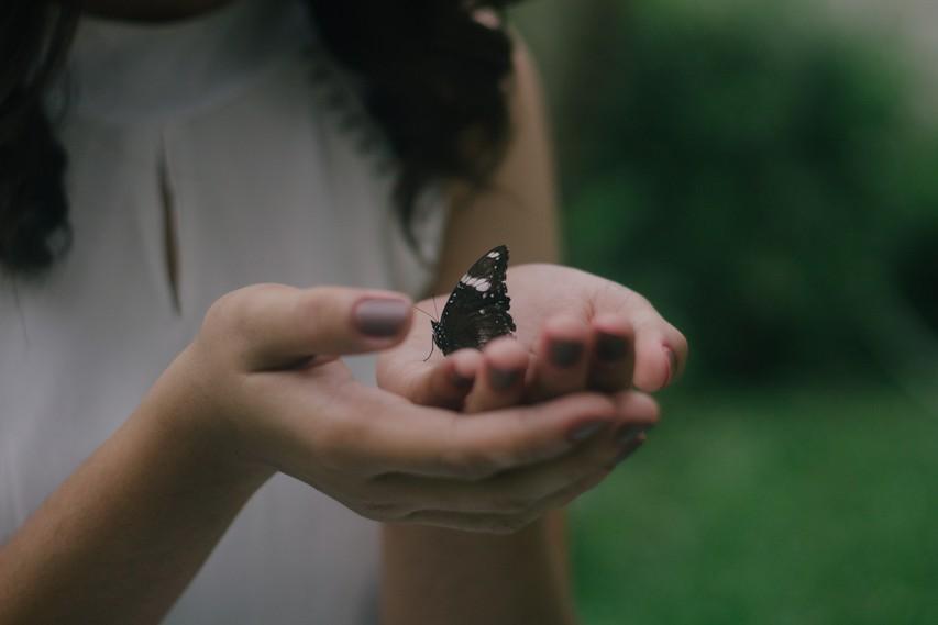 Zgodba: Od narave se lahko veliko naučimo
