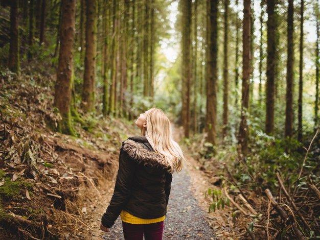 Čas je, da obisk narave postane naše vsakdanje (ali vsakotedensko) opravilo - Foto: profimedia