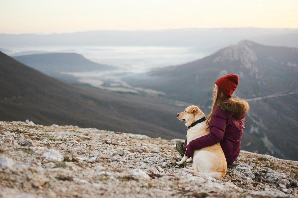 treking-pes-zenska-razgled-gore-profimedia