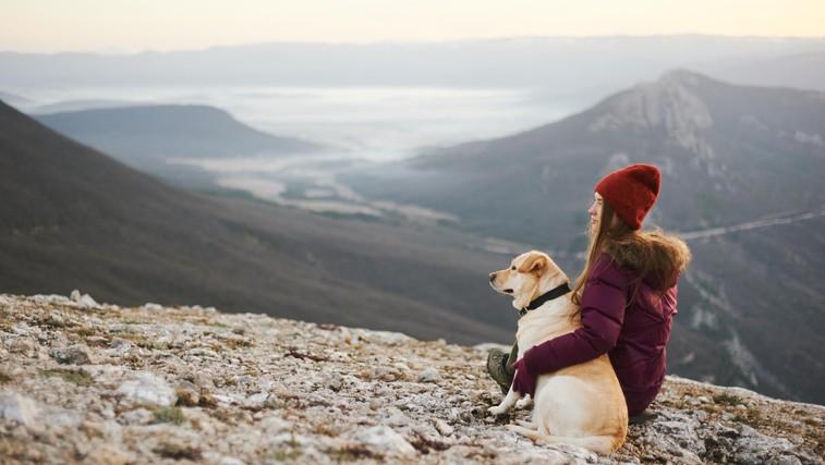 Vse, kar morate vedeti, preden greste s psom na pohod + top pasme za treking (foto: Profimedia)