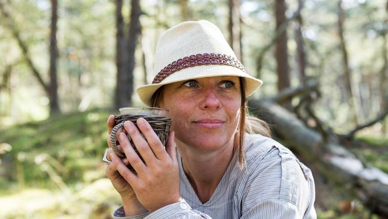 Sladki pelin - ena izmed najbolj iskanih zdravilnih rastlin (foto: profimedia)