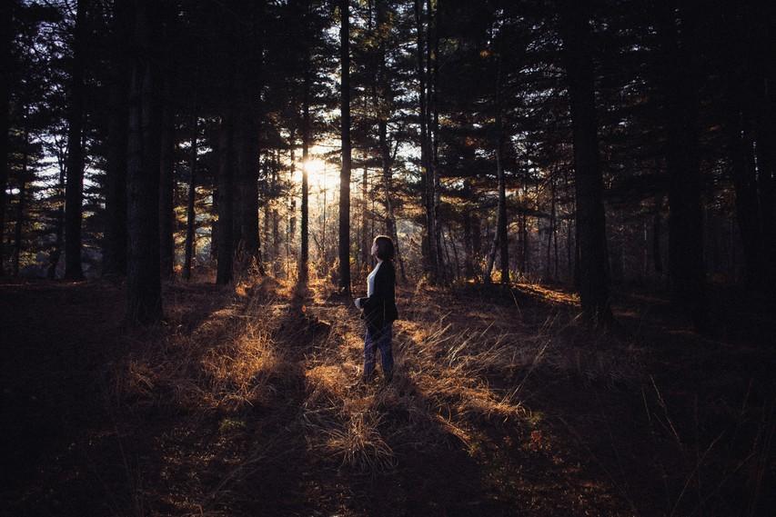 Človeško srce, ki je proč od narave, postane trdo