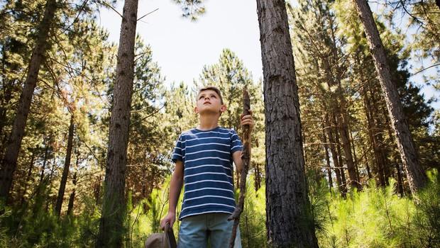 6 razlogov, zakaj bi morali otroci preživeti več časa v naravi (foto: profimedia)