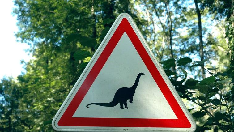 Ideja za družinski izlet: V čas Rimljanov, med dinozavre in po zaklad (foto: profimedia)