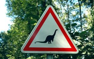 Ideja za družinski izlet: V čas Rimljanov, med dinozavre in po zaklad
