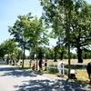Posebno doživetje: Dan za velike in majhne mojstre barvanja in piknik v Lipici